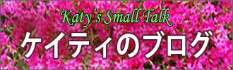 英語と日本語で書かれたブログ